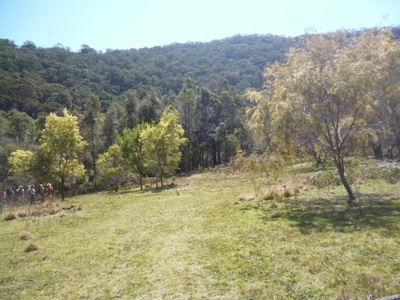 Muogamarra Nature Reserve, peats crater, walk, bushwalk, wildfowers