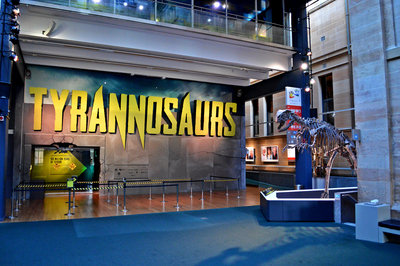 A sole tyrannosaur display guards the entrance to the exhibit