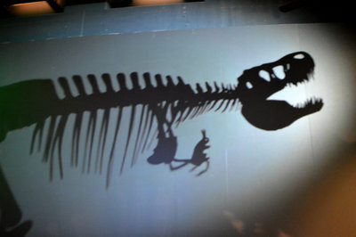 A tyrannosaur practises shadow puppetry