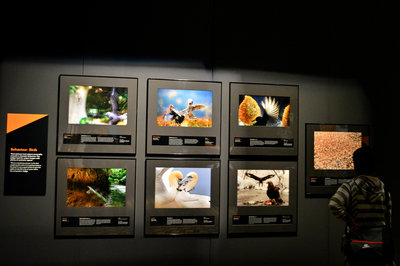 Photography exhibit – be sure to read the captions